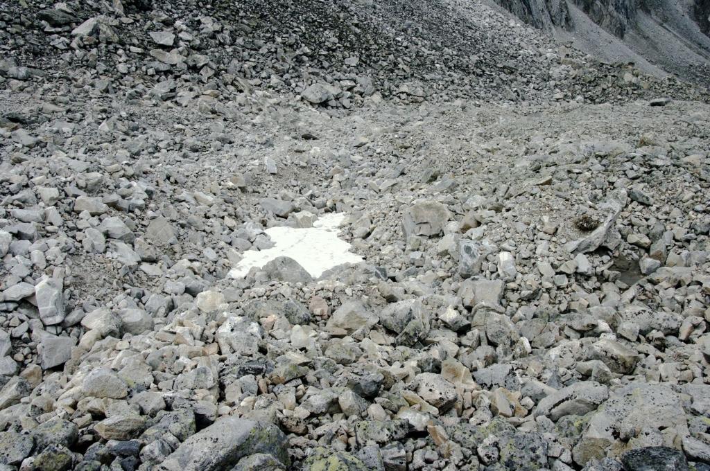 Морена палеоледника Древне-Северного